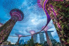 singapore lion singapore the lion city etips travel apps with augmented reality