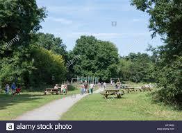 Park West Landscape by Manor Park Country Park West Malling Kent England United