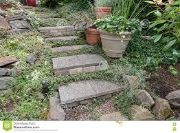 cement stone steps to backyard garden stock photo image 74524876