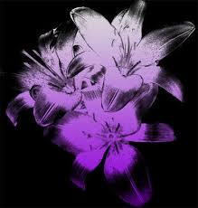 Lily Flowers Lily Flowers Brush Flowers Photoshop Brushes Brushlovers Com