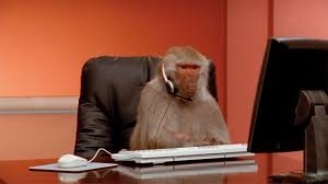 Baboon Meme - stock footage of baboons at work prompts perfect memes