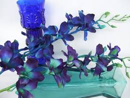 blue and purple orchids 4 stems teal purple ca dendrobium orchids silk flower stems galaxy