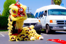 lion dancer book lion wushu shaolin entertainment