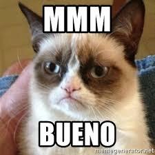 Bueno Meme - mmm bueno grumpy cat meme generator