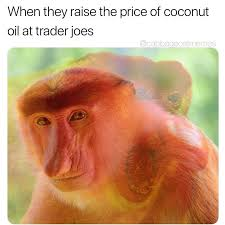 Rude Funny Memes - rude memebase funny memes