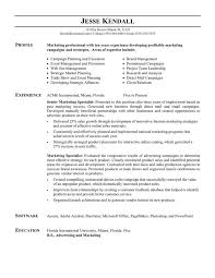 Online Marketing Resume by Free Job Resume Template