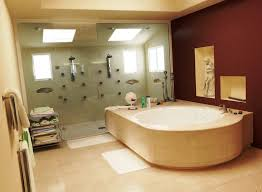 Handicapped Bathtubs And Showers Handicap Tubs With Doors U2014 Kitchen U0026 Bath Ideas Best Round