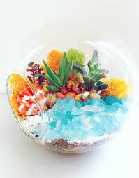 glass lily bowl succulent terrarium w river rocks and amethyst