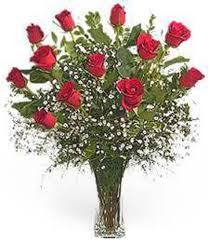 flower delivery dc dozen roses the ultimate stem favorite about flower