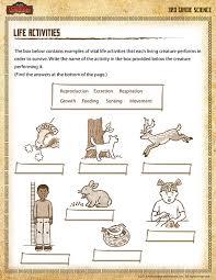 4th grade science printable worksheets mreichert kids worksheets