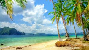 beautiful wallpaper photo collection beautiful beach and palm wallpaper