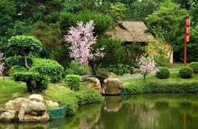 Evergreen Landscaping Ideas Gardens With Magnolia Trees 25 Healing Backyard Ideas To Feng