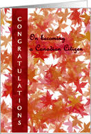 citizenship congratulations card congratulations on becoming a canadian citizen from greeting card