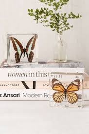 Butterfly Office Decor 296 Best Butterfly Moth Caterpillar Images On Pinterest