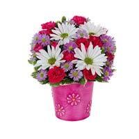 Flower Shop Weslaco Tx - occasions rodriguez flowershop