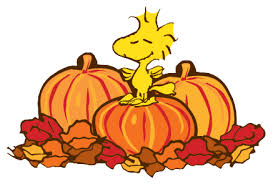 woodstock on pumpkins peanuts thanksgiving clipart images