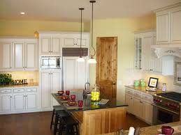 Yellow Kitchen Walls by Kitchen Design With Black Cabinets And Grey Wall Outofhome