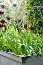 2884 best gardens images on pinterest garden gardens and