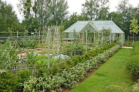 greenhouse in the vegetable garden vegetable garden and large