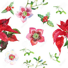 christmas plants seamless pattern with christmas plants stock photo picture and