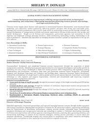 Great Resume Layout Examples Sidemcicek Supply Resume Examples Examples Of Resumes