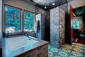 Cool Showers For Bathrooms Bathroom Awesome Bathroom With Shower Devider Also