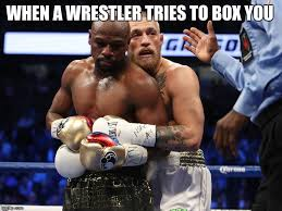 when wrestler tries to box you imgflip