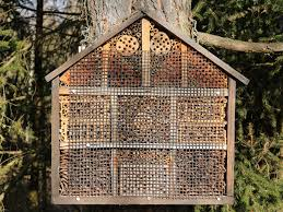 How To Build A Shed Against House by How To Build A Native Bee Hotel Modern Farmer