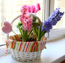 cosy flowers decoration for home in home decor interior design