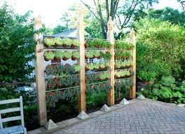 Privacy Garden Ideas Privacy Garden Ideas Vertical Garden Ideas Front Garden Privacy
