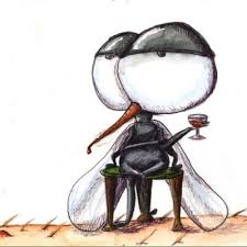 moustique dans ma chambre un gentil moustique unmoustiquefdp