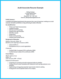 Professional Accountant Resume Example Sample Audit Resume Resume Cv Cover Letter