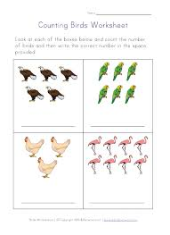 birds worksheets our english site