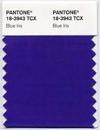Pantones Color Of The Year Pantone 18 3943 Blue Iris Cmyk 75 58 2 0 Goe 59 1 4 Solid