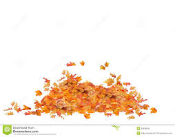pile of fall leaves clipart clipartxtras