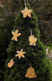 Christmas Ornaments Outdoor Tree by Decorate Your Outdoor Tree With Baubles For Birds Oregonlive Com