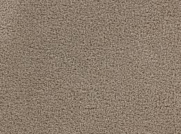 veranda beaver carpets