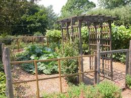 vegetable garden fence ideas rabbits decorating clear