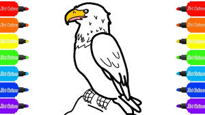 how to draw a bald eagle coloring pages drawing videos for