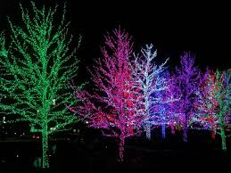 Stone Zoo Christmas Lights by 643 Best Christmas Lights U003c3 Images On Pinterest Christmas Time