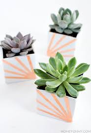 diy copper and white succulent planters homey oh my