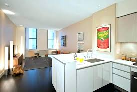 kitchen ideas for apartments apartment kitchen decorating ideas contemporary kitchen cabinets in