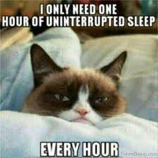 Sleep Meme - 70 most awesome sleep memes