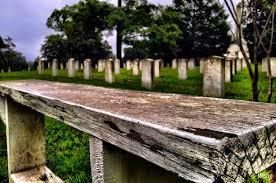 cemetery headstones oakwood cemetery stories the headstones