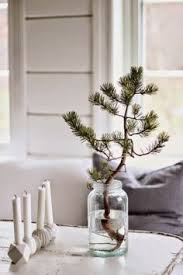 minimal christmas tree in glass vase holiday pinterest