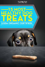 top 15 best healthy treats for dogs 2016 usda organic certified