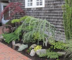 best 25 foundation planting ideas on evergreen