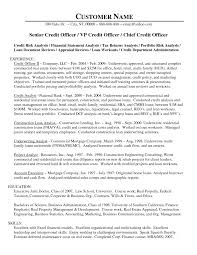 Security Guard Resume Entry Level 100 Security Officer Resume Security Guard Resume Example For