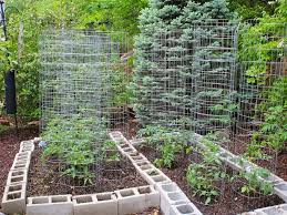 Backyard Vegetable Garden And Landscaping Decorating Clear - Backyard vegetable garden designs