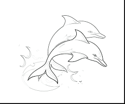 dolphin coloring pages pdf coloring page dolphins coloring pages miami dolphins printable